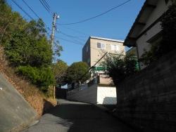 散歩20131231-09