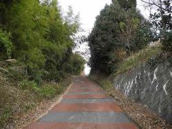 散歩20140120-4
