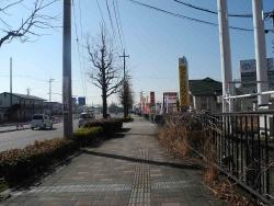 散歩20140129-4