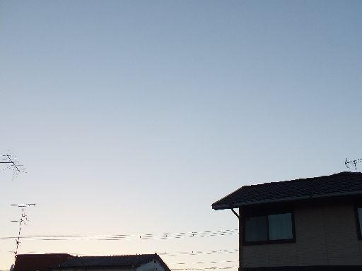 DSCF6042.jpg