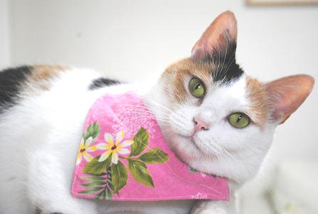 花柄ピンク
