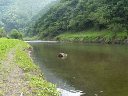 梅田湖、バックウォーター_20120711_DSCN2091