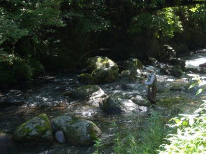 20120905_3_桐生川_P9050378
