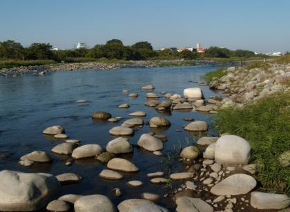20121021_昭和橋左岸_DSCN2374
