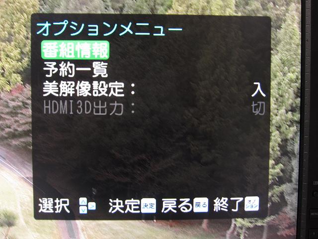 DTH310R_33.jpg