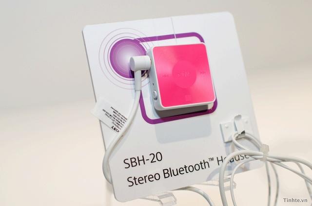 SBH20_01.jpg