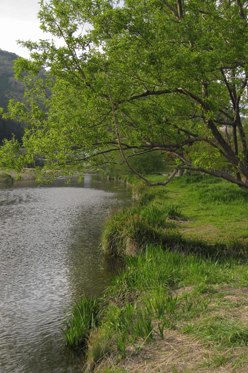 hiragino_13_4_19_1.jpg
