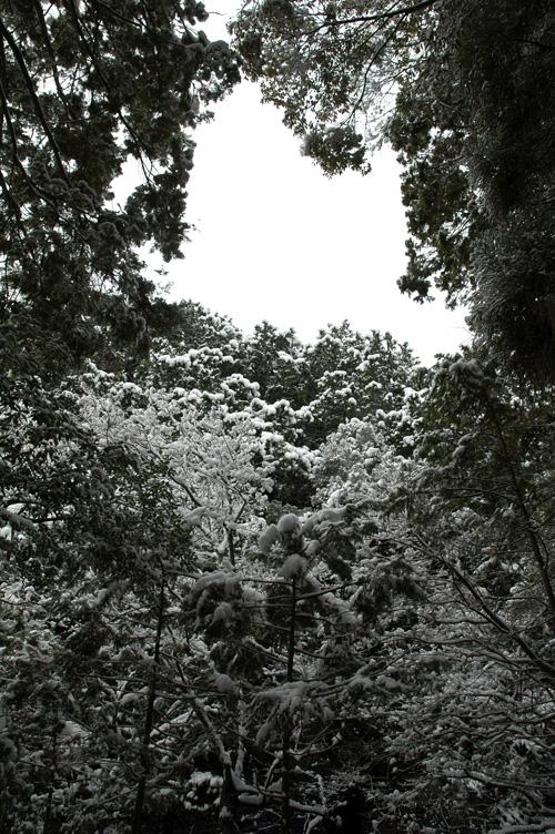 snow13_1_4_5.jpg