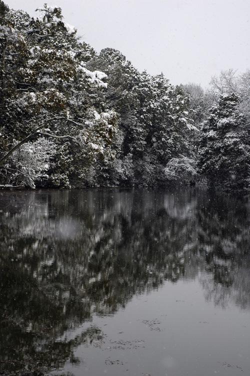 snow13_1_4_7.jpg