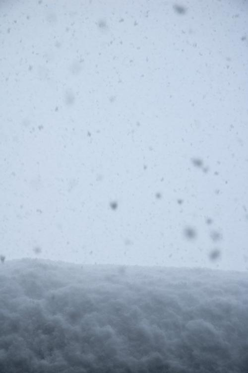 snow_13_1_18_10.jpg
