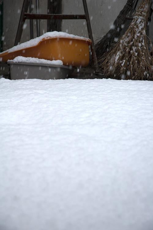 snow_13_1_18_11.jpg