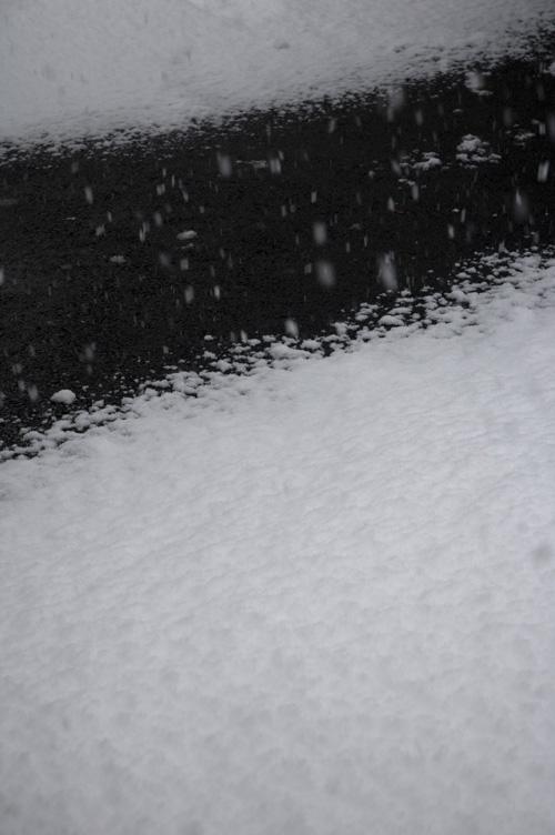 snow_13_1_18_5.jpg