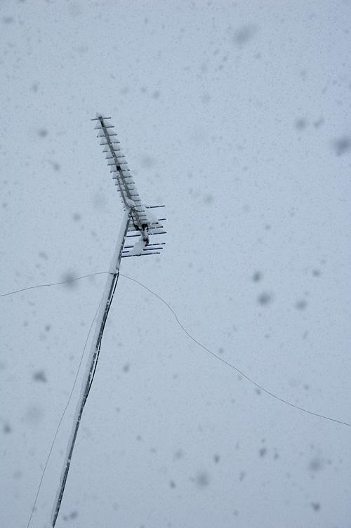 snow_13_1_18_9.jpg