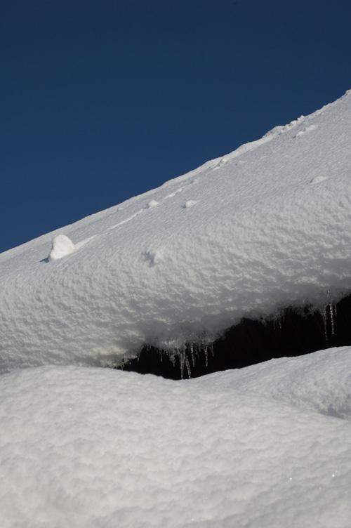 snow_13_1_19_1.jpg
