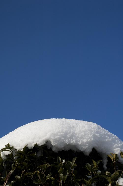 snow_13_1_19_2.jpg