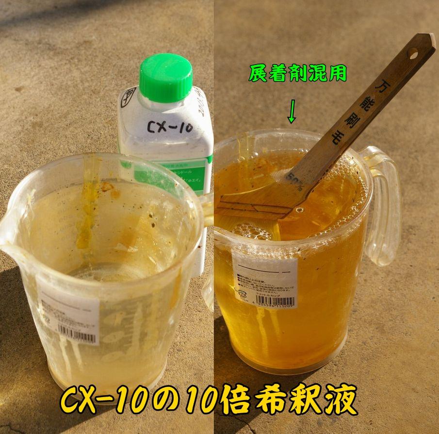 CX_10c1.jpg