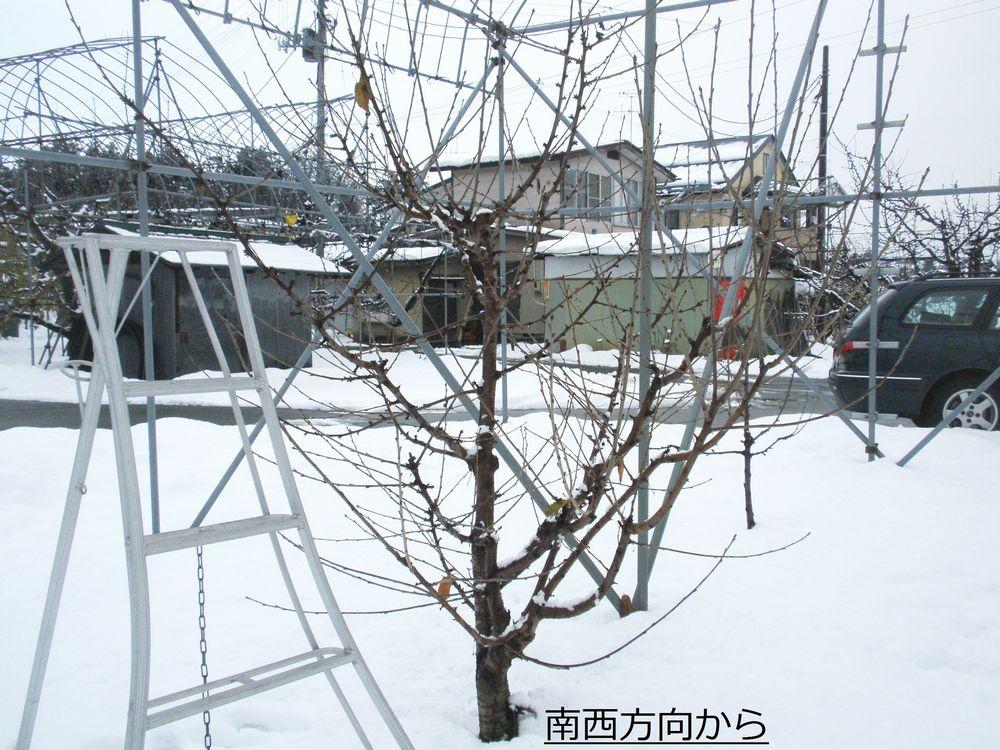 PC1313c2.jpg