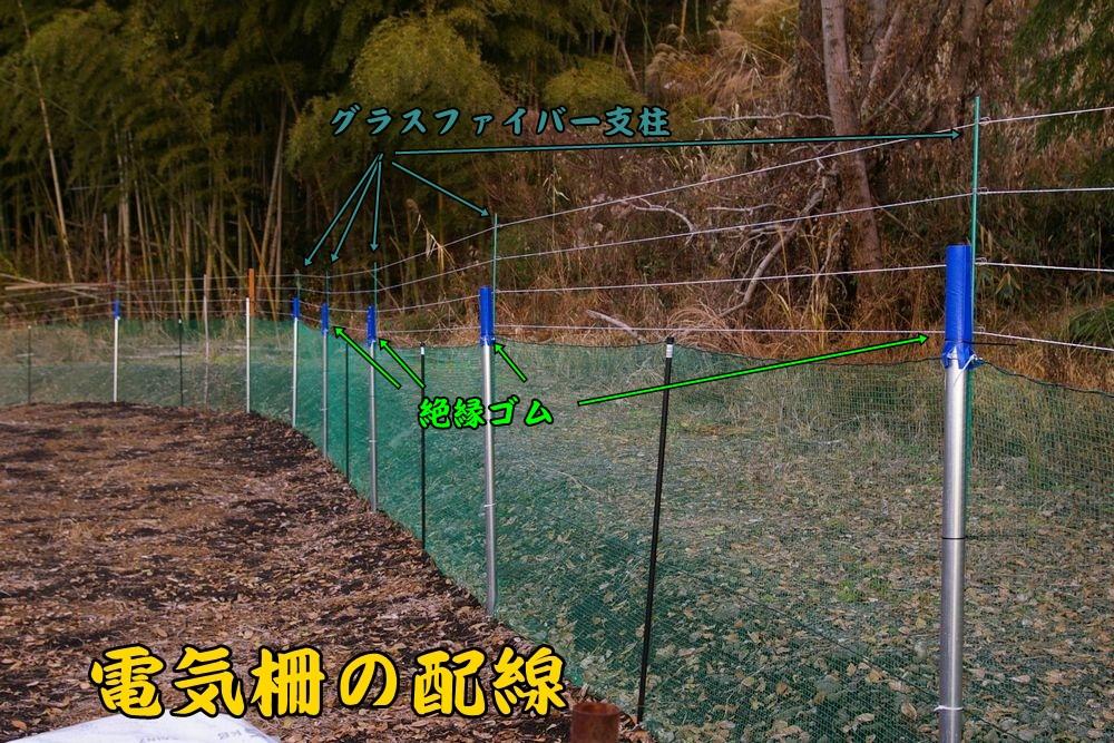 densaku1218c5.jpg