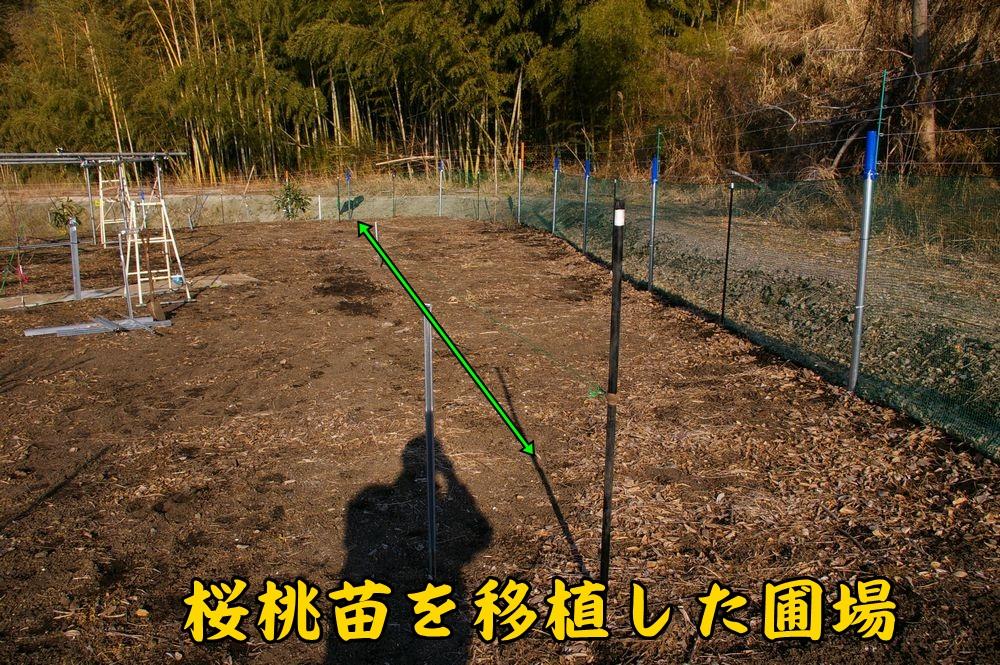 outo_hojyo0108c1.jpg