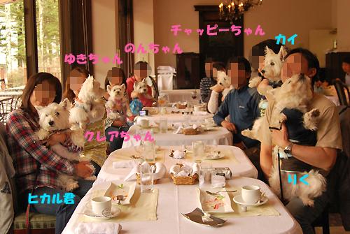 blog_20120519_8.jpg