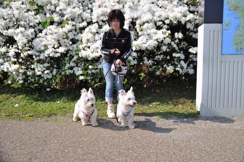 blog_20120606_1.jpg