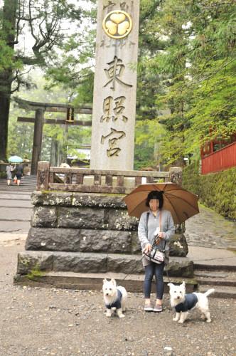 blog_20120610_3.jpg