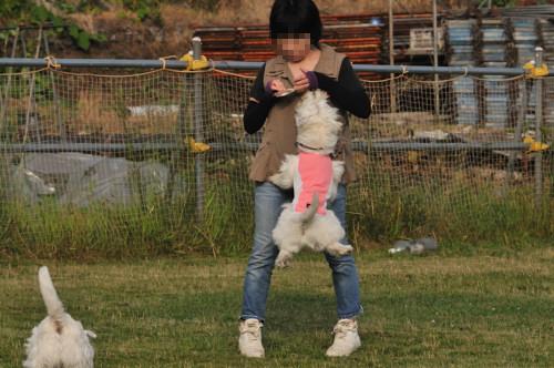 blog_20120703_1.jpg
