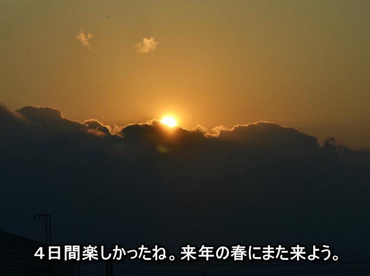 20130506-11.jpg