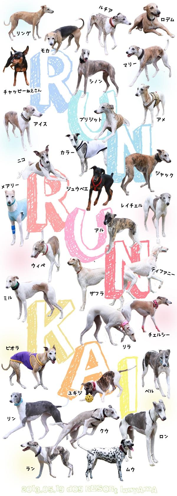 犬山RUNRUN会