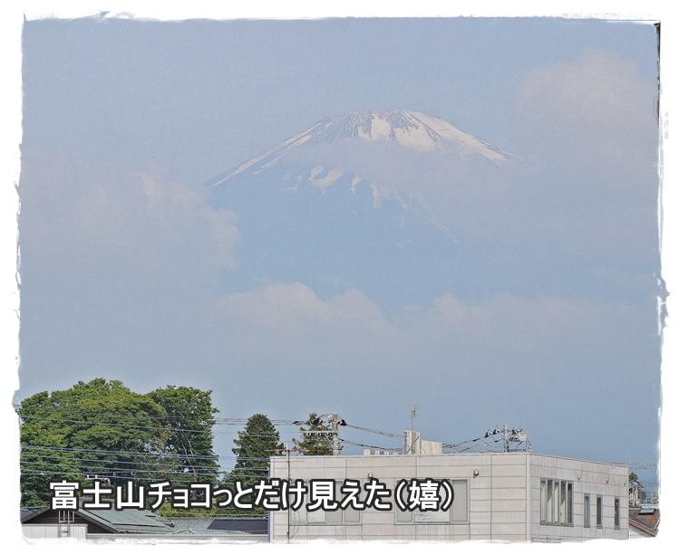 20130609-1.jpg