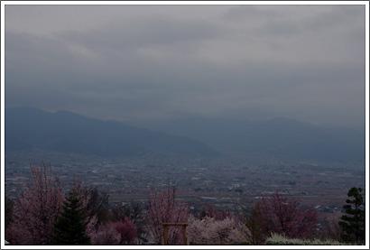 20120416_11.jpg