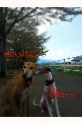 20120424_131048.jpg
