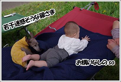 20120429_4.jpg