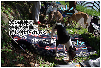 20120505_13.jpg