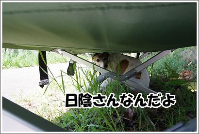 20120505_16.jpg