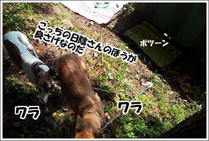 20120505_20.jpg