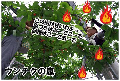 20120609_15.jpg