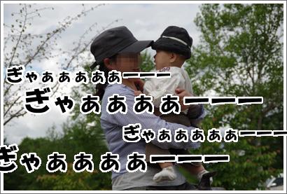 20120610_22.jpg