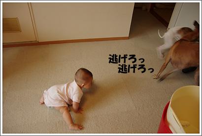 20120612_9.jpg