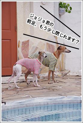 20120616_11.jpg