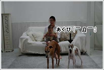 20120616_24.jpg