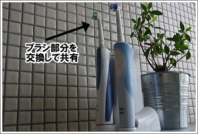 20120708_71.jpg