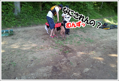 20120829_5.jpg