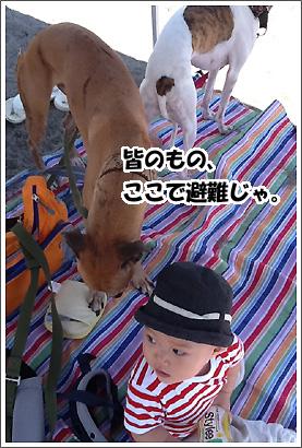 20120913_17.jpg