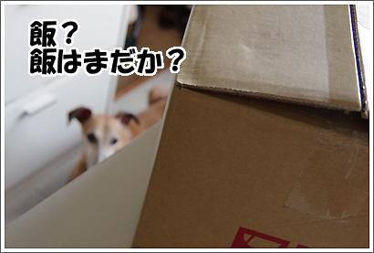 20120923_15.jpg