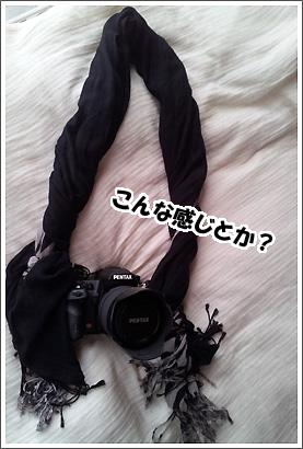 20120927_10.jpg
