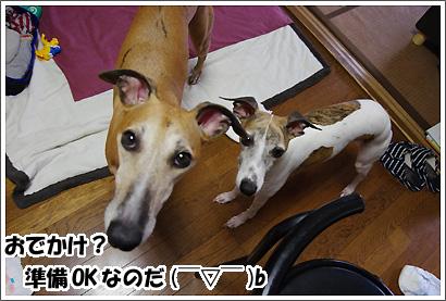 20120930_21.jpg