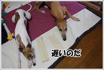 20120930_23.jpg