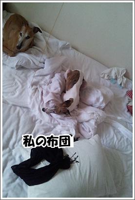 20120930_29.jpg