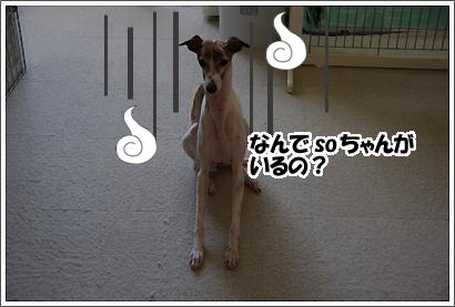 20121019_24.jpg